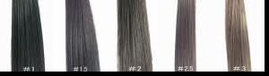 カツラ 髪の毛の色